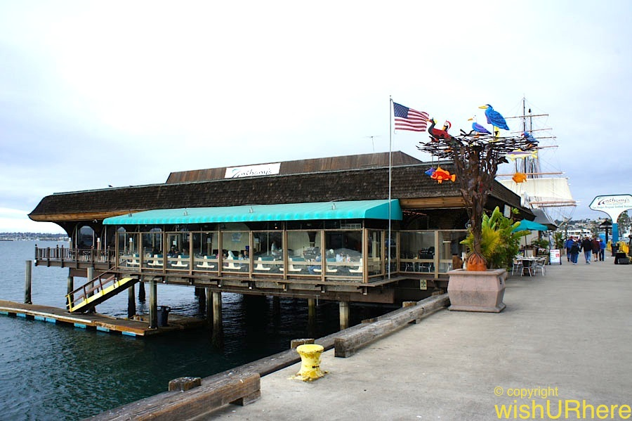 anthony s fish grotto san diego usa wishurhere