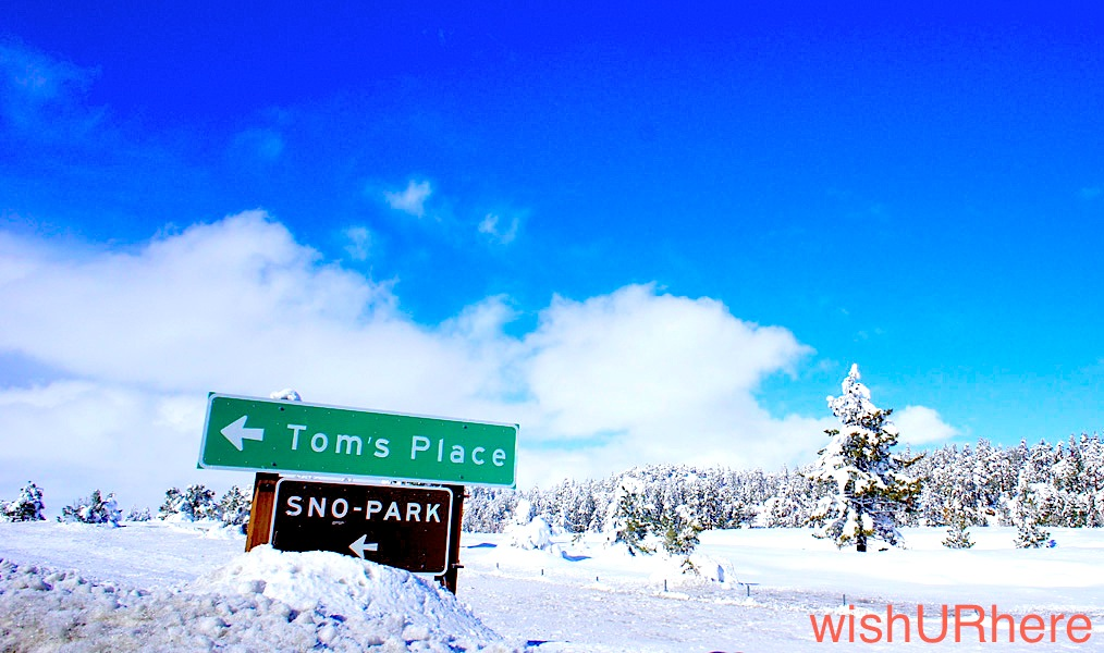 Toms Place Ca Hotels