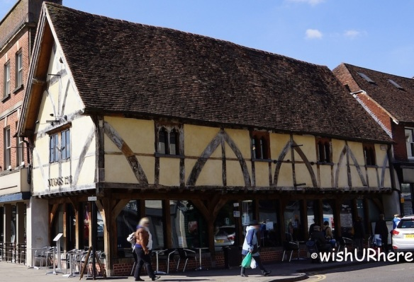 Nuggs 1268 Salisbury