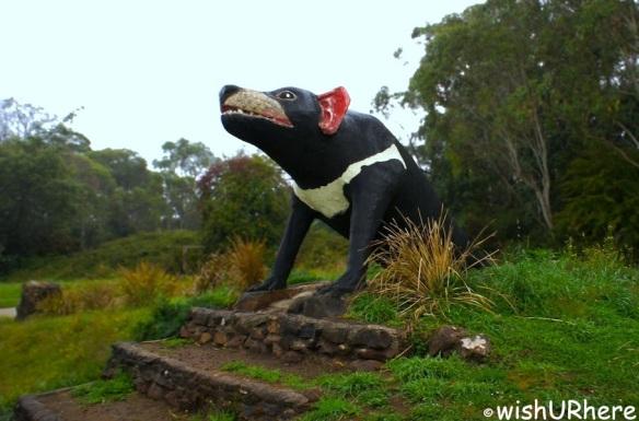 Giant Tasmania Devil