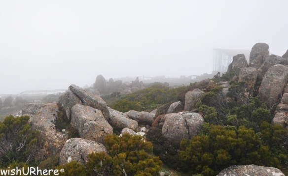 Mt Wellington Hobart