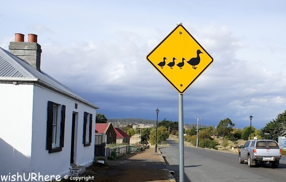 Oatlands Tasmania