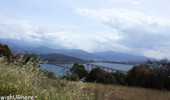 Tasman Bridge from Rosny Hill