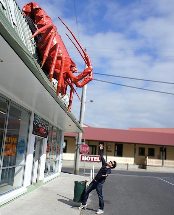 Tasmania biggest Crayfish