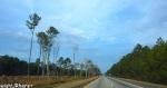 Driving to Columba SC