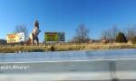 Dinosaur World Kentucky