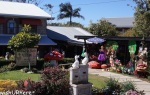 Gallery Walk Tamborine