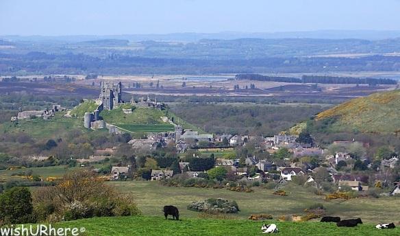 Corfe Castle Norden