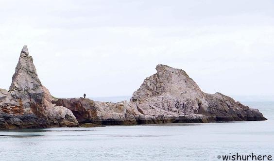 Antey's Cove Torquay