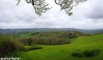 View from Haldon Belvedere