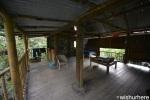 Eden Project- Tropical Hut