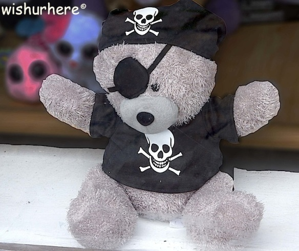 Teddy Pirate