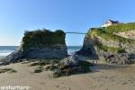 The Island Newquay
